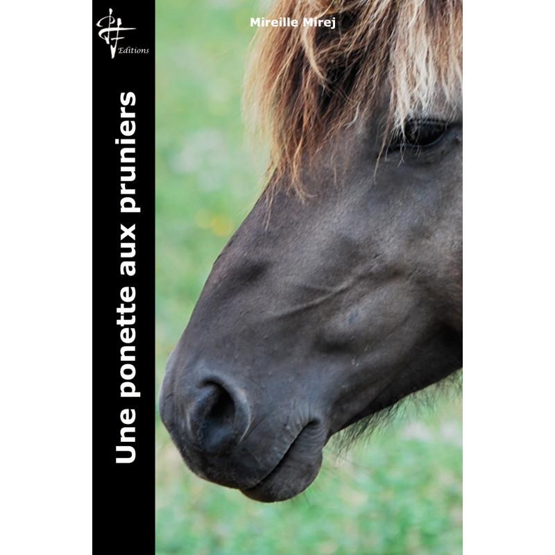 Ile de Ré - Photographie d'art