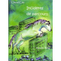 Incidents de parcours